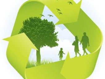 Годом экологической культуры в россии